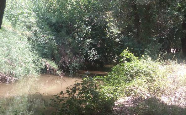 River_sidirokastro.jpg