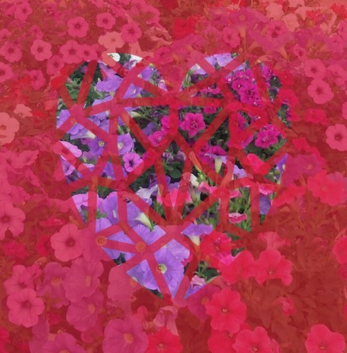 Flowers_red_heart_universe.jpg