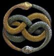 Snake_bite_itself_fidi_dagkonei_oura.jpg