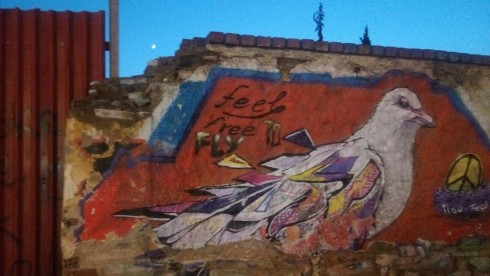 feel_free_to_fly_grafiti_peristeri_pigeon_bird.jpg