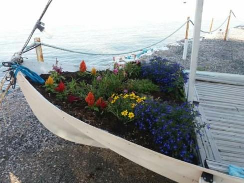 boat_plori_flowers_beach