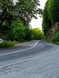 road_light_green.jpg